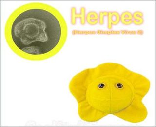 Herpesplushy