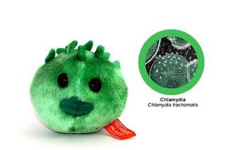 Chlamydia_1601-l
